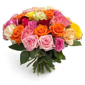 Roses mix Send Flowers